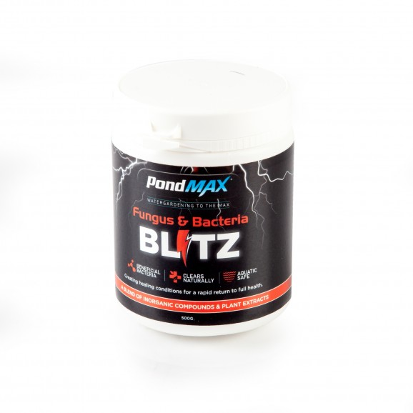 BLITZ - FUNGUS & BACTERIA TREATMENT 500G